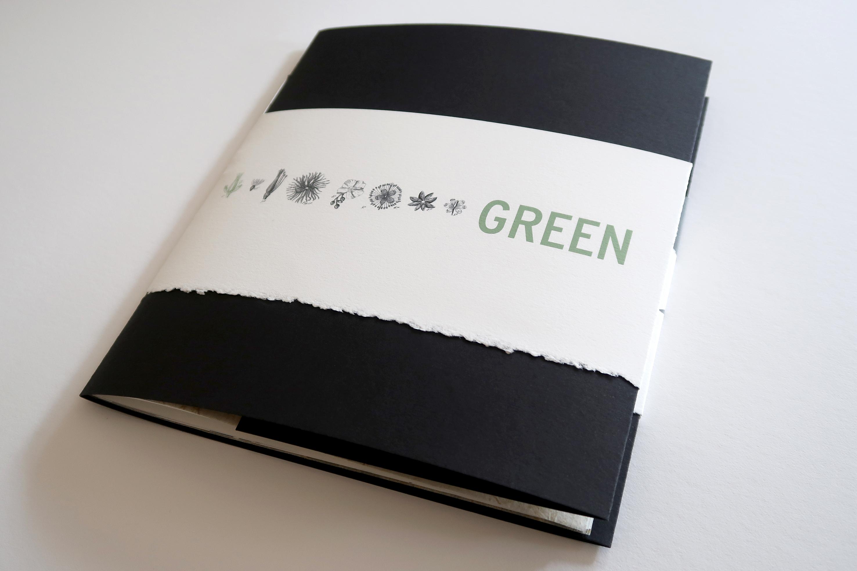 Makula_Green1 (003)